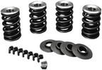''Jims 675 Spring Kit Evo Bt Valve Spring Kit .675'''' Lift''